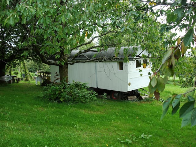 Romantic Circus Waggon with a View - Wernetshausen - Annat