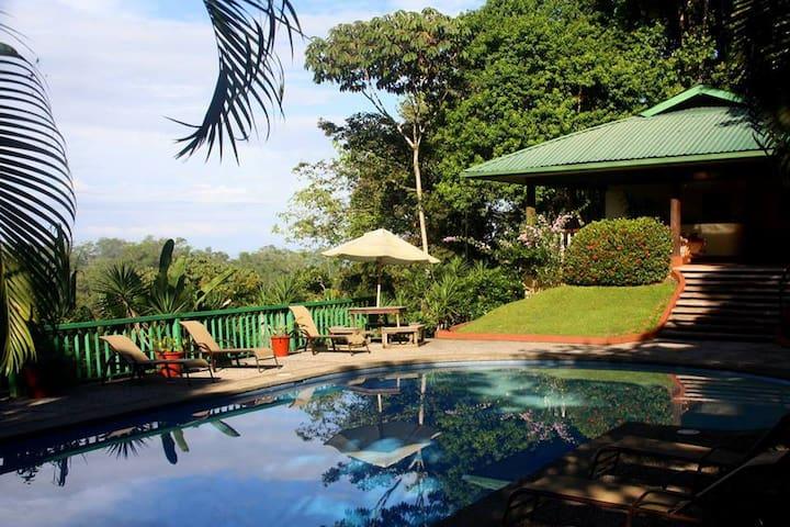 Villa in a tropical jungle setting - Ojochal - 別荘