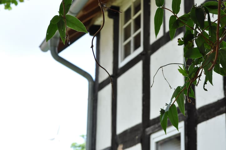 Auf dem Kleeberg - Vlotho - Apartment