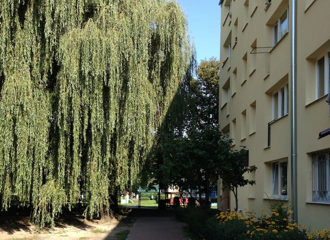 Top Wohnung in Pruszków - Pruszków - Daire