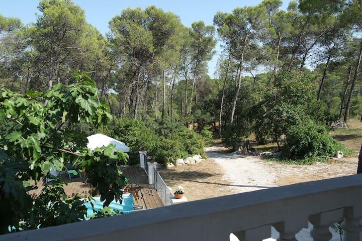 Loft avc grande terrasse sur pinede - Saint Clement de riviere - Loft